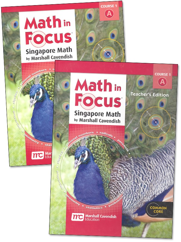 Printables Math In Focus Worksheets safarmediapps Worksheets – Math in Focus Worksheets