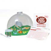 Ladybug Land Metamorphosis Kit