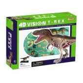 4D Vision T-Rex Anatomy Kit