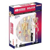 4D Human Skeleton Kit