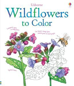 Usborne Wildflowers to Color