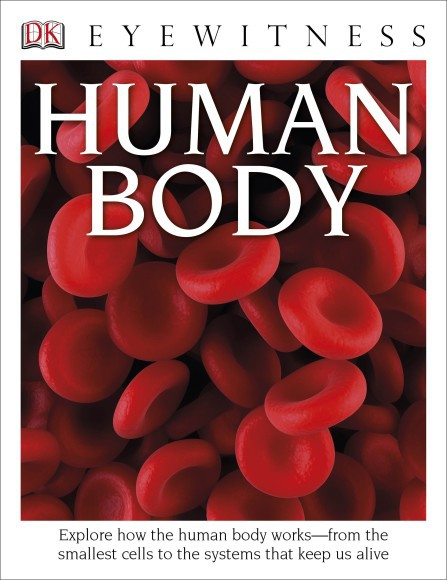 Eyewitness Human Body