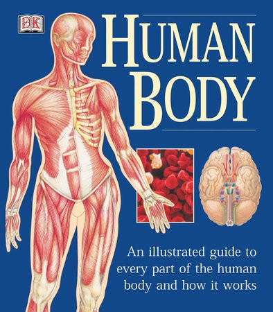 The Human Body Illustrated Guide
