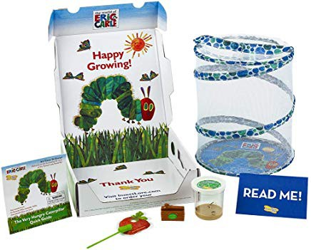 Insect Lore World of Eric Carle, The Very Hungry Caterpillar Butterfly Growing Kit with Voucher for Live Caterpillars