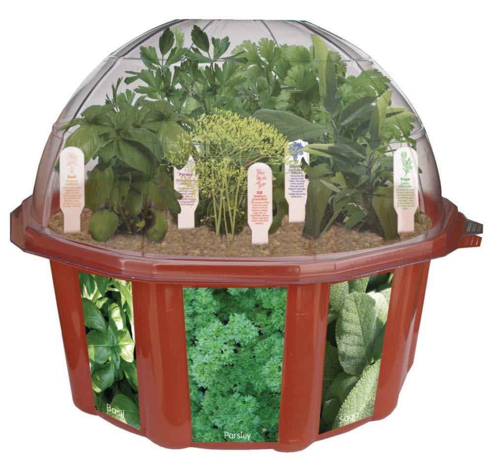 Dunecraft  Herb Garden