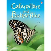 Usborne Caterpillars and Butterflies
