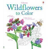 Usborne Wildflowers to Color