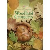 Usborne Young Beginners -Woodland Creatures