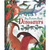 Usborne Big Picture Book Dinosaurs