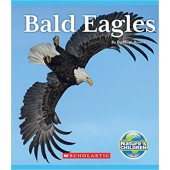 Bald Eagles (Nature's Children)
