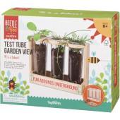 Toysmith Beetle & Bee Test Tube Garden View