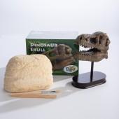 Excavation Kit: Dinosaur Skull GeoCentral