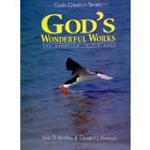 God's Wonderful Works Grade 2