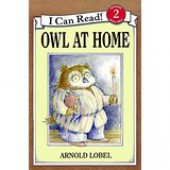 Owl at Home Level 2 Reader