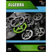 Steck-Vaughn Core Skills Algebra Workbook Grades 8+