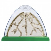 Ant Mountain Ant Tunneling Kit