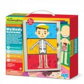 My Body Systems Anatomy Kit