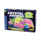 Crystal Growing: Glow-in-the-Dark