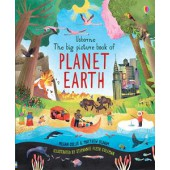 Usborne Big Picture Book of Planet Earth, The (IR)
