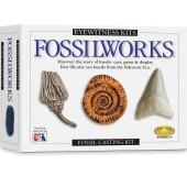 Eyewitness Kits Fossilworks