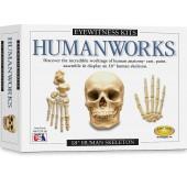Eyewitness Kits Humanworks