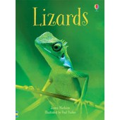 Usborne Lizards (IR)-Beginner Reader Series