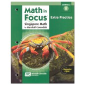 Math in Focus: The Singapore Approach Grade 7 (Course 2) Extra Practice B