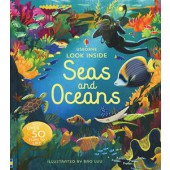 Usborne Look Inside Seas and Oceans