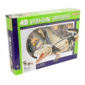 4D Vision Crocodile Anatomy Model